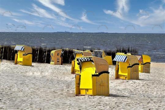 Strandkorb Nordsee Foto Bild