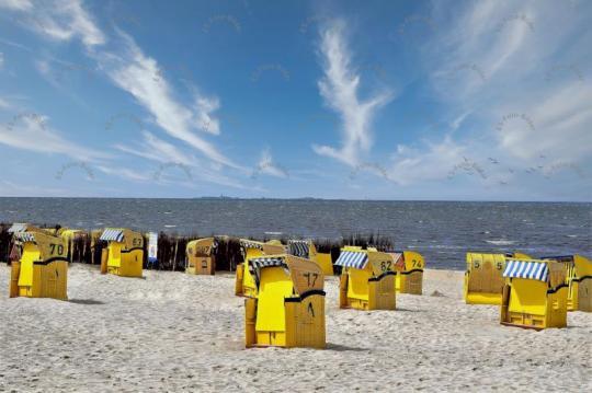 Strandkörbe an der Nordsee Foto Bild