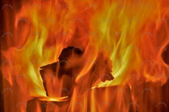 Feuer Kaminfeuer Foto Bild