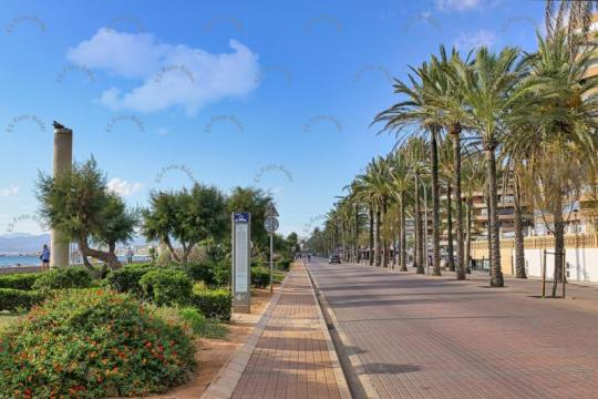 Mallorca Platja de Palma Arenal Foto Bild