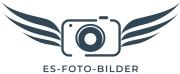 Bilder Foto Stockfoto Sonne Meer Urlaub Blumen Pflanzen
